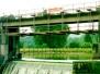 Flusskraftwerk Fahrweid, ZH